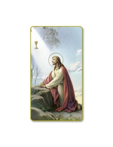Santino di Gesù nell'orto...